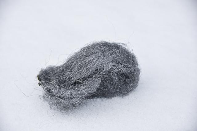 Einfache Stahlwolle reicht für die Reinigung polierter Grabsteine